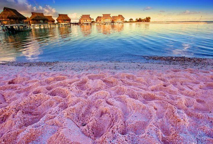 Pink Sand Beach Bahamas All Inclusive